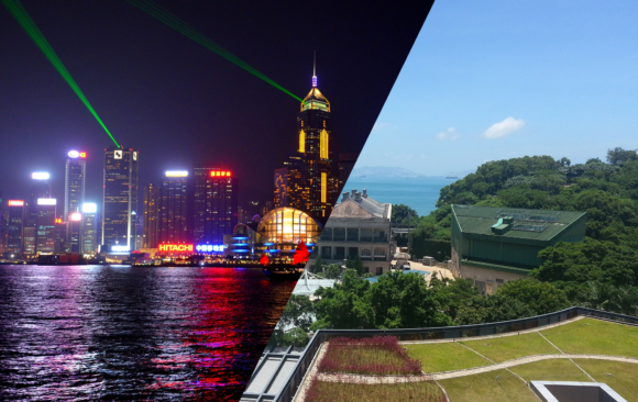 Hong Kong Working Holiday, Perfect Guide For Your Starting